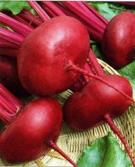 Seeds of table beet, Polish selection