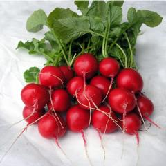 I will sell seeds of garden radish, the Italian selection