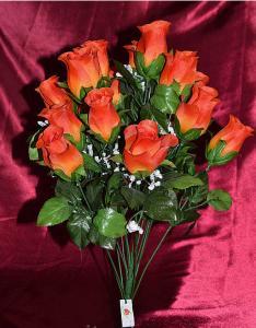 Роза кашка (16 голов)