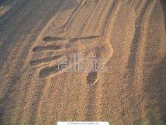 Строительный песок оптом из Павлограда