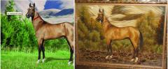 Pictures from amber Kiev, the Photo of a horse,