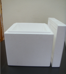 Boxes for storage of an artificial ice of 10 kg