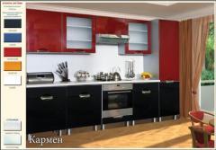 Кухни купить Украина, Кухни Кармен купить