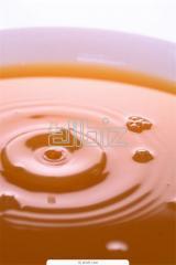 Honey organic Sumy