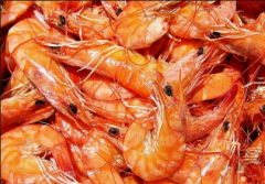 Frozen shrimps wholesale