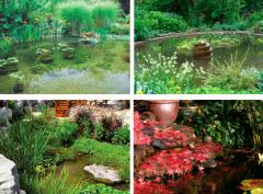 Garden and decorative ponds
