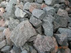 Бут каменный.