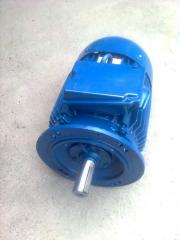 Electric motor 2-speed 4AM100S4/2