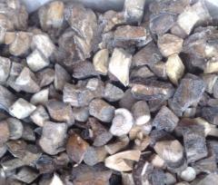 Aspen mushroom, birch mushroom the frozen (cube)