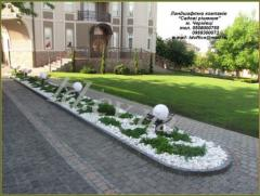 Paths are garden, Paths garden Chernivtsi,