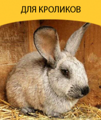 Compound feed for rabbits