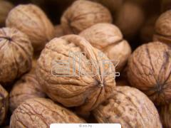 Nuts wholesale