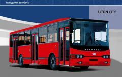 City bus Native of the Volga region 5270