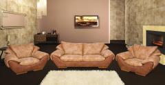 Furniture from skin