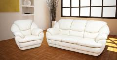 Upholstered and leather furniture of a premium