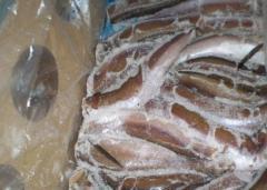 Рыба замороженная Минтай