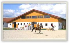 Arena and the training platform for horses