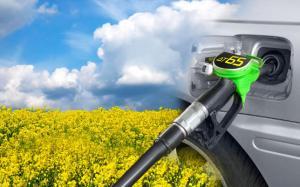 Биодобавки в топливо