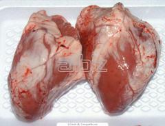 Heart is chicken, offal of bird wholesale