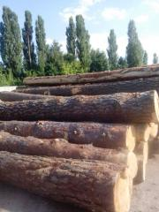 Round timber from which we do sawn timber!