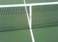 Grids for big tennis: The grid is tennis simple,