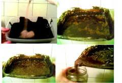 Биопрепарат для разложения нефтепродуктов