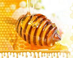 Мед из лесных трав