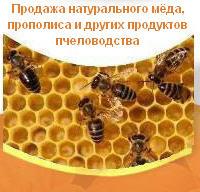 Мед из степных трав