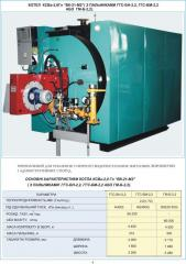 Copper steel water-heating automated dvukhkhodovy
