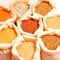 Зерновые и масличные, бобовые культуры