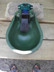 Drinking bowls for cattle