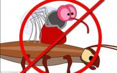 Борьба с комарами на открытой территории - Харьков, Киев, Одесса