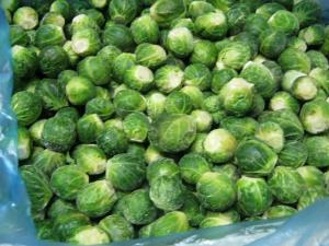 Brussels sprout fresh-frozen