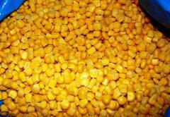 He corn frozen