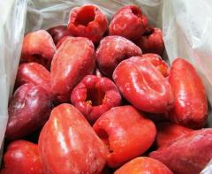 El pimiento rojo congelad