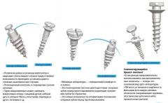 Microimplants orthodontic BioMaterials Korea
