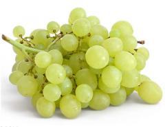 Grapes of kishmishny grades from the producer