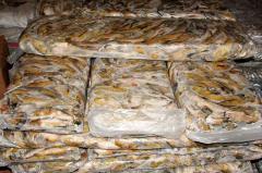 Бычок мороженый в полиэтиленовых брикетах по 10кг