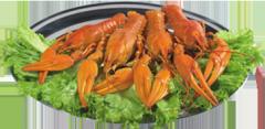 Live crawfishes boiled small, average, large,