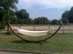 Products from a tree. Hammock