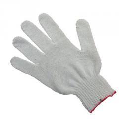 Gloves economic x - (the Code: 41120)