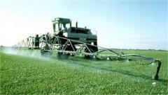Herbicides: Aztec, Galleon, Gorinich, Quasar,