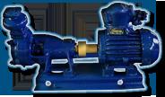 Pumps vortex BK, BKC, BKO for water and chemically