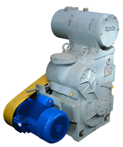 Pumps vacuum (VVN, AVZ, NVZ) for gases and air