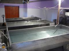 Site of production of cottage cheese, cheeses,