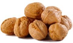 Целые грецкие орехи возможен экспорт