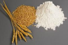 Wheat flour of the first grade from soft grades of