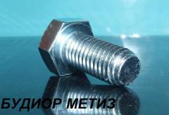 Bolt from a stainless steel