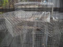 Cage for transportation of a broiler, ducklings