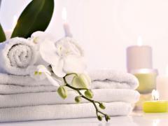 Organic washing powders productions to wholesale